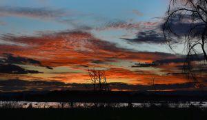 Dusk @ Lake Naivasha
